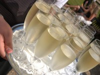 White sparkling wine