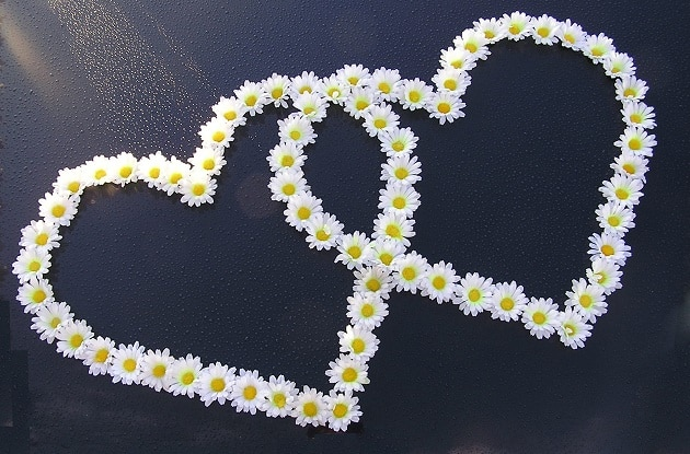 Hearts made out of floating flowers