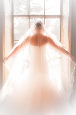 Wedding dress at window